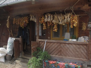Part of the guest house. They were drying beans, onions, and garlic for the winter. They were also fattening up 3 pigs.