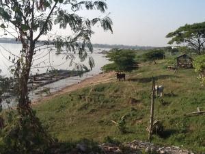 Mekong River from Nong  Khai