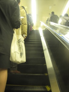 Notice how neat and orderly Japanese queue up the escalator so people can walk on the right