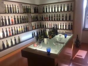 Vipava wine tasting