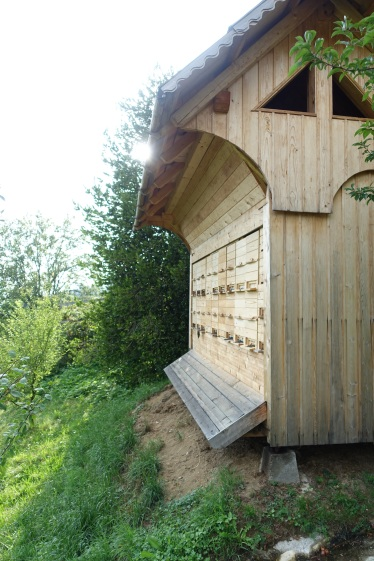 The bee hives at the farm