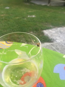 Yellow jackets all over. Drinking a grapefruit radler before I shower